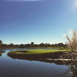Golf course hole 11 with pond and green